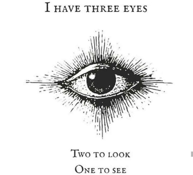 Eye's don't mean vision